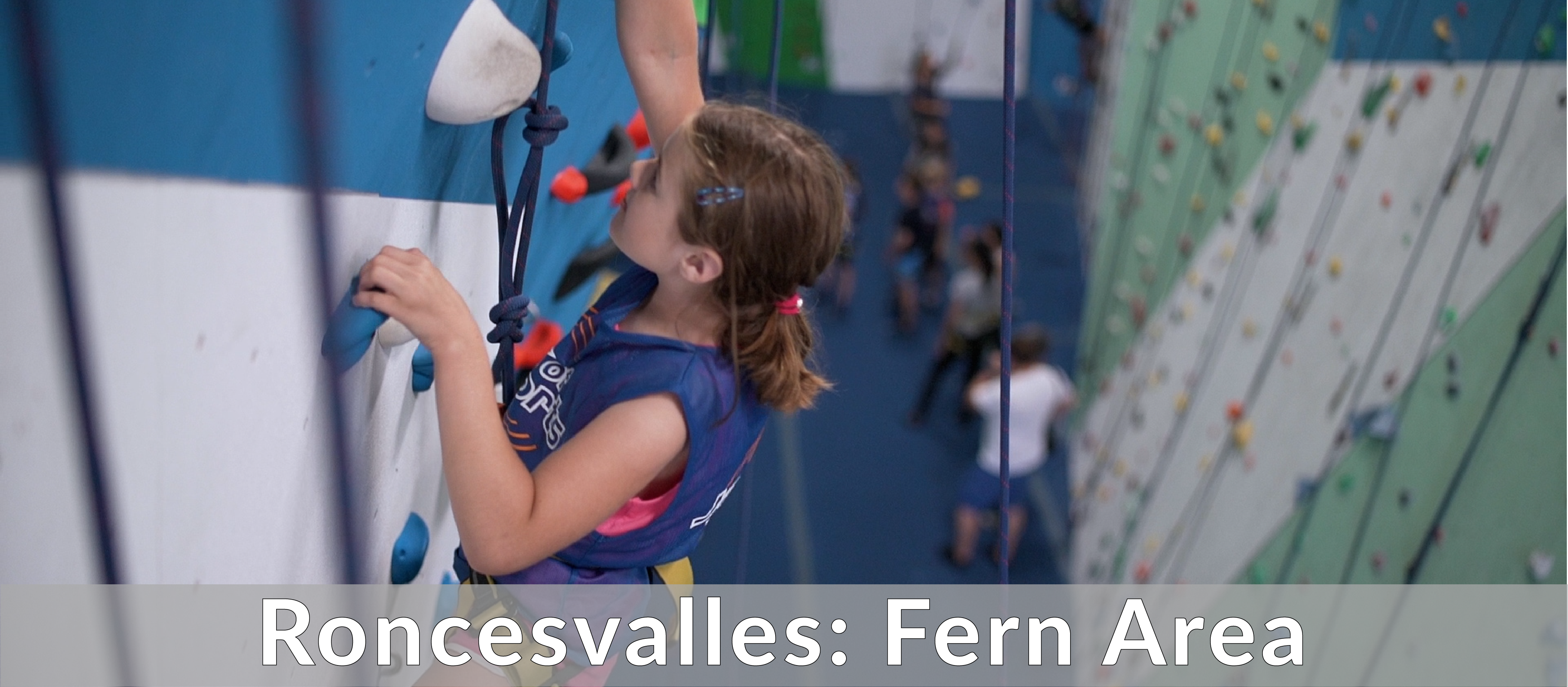 Roncesvalles Fern Area Summer Camps near me 2020